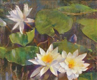 water lilies by laura coombs hills