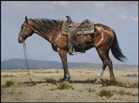 quarter horse by geoffrey allan rock