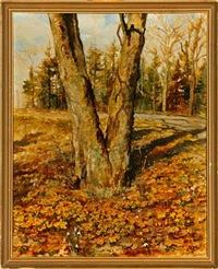 a spring forest in denmark by olga rosanova