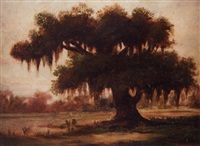tree with spanish moss, louisiana bayou by sidonia (mrs. lewis crager) loeb