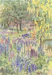 a bed of lupins beside a garden pond by edith fisher