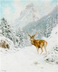 hirsch in verschneiter landschaft by kristian haug