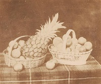 a fruit piece, pl. xxiv (from the pencil of nature) by william henry fox talbot
