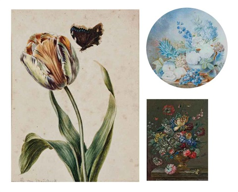 tulipe et papillon 4 others 5 works by cornelis van spaendonck