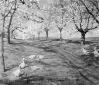 gänse unter blühenden obstbäumen by franz kortejohann