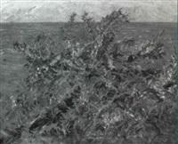 meeresausblick mit blühendem strandginster by karl hennemann