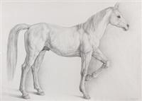 caballo by claudio bravo