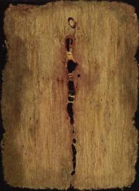 abstract with aloe pod by aileen lipkin