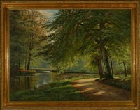 spring forest with stream by axel jacobsen