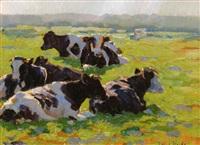 kühe auf der weide im sonnenlicht by johannes wilhelm van der heide
