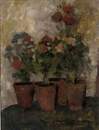 still life with potted flowers by charles dankmeijer