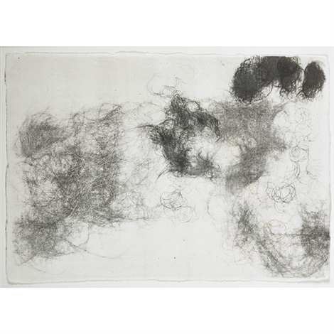 untitled hairdrawing by rosemarie trockel