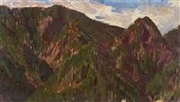 bewaldete berglandschaft by ferdinand andri