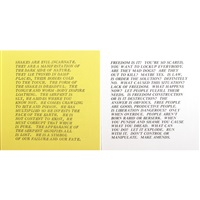 inflammatory essays (10 works) by jenny holzer
