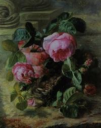 vögel im nest zwischen rosen by rodolphe piguet