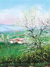 primavera by franco azzinari