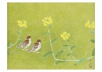 sparrow by atsushi uemura