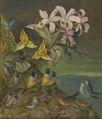 fantastische landschaft mit orchideen und singvögeln by hans huber-sulzemoos