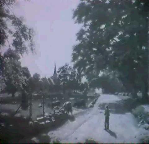 junisonne motiv vom stanmerpark bei brighton in england by fritz von kamptz