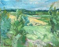 landskab, kullen by sigurd swane