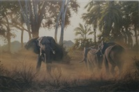 elephants by paul augustinus