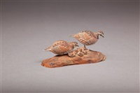 miniature quail pair with chicks by allen j. king