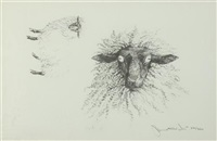 sheep; head of sheep (2 works) by jamie wyeth