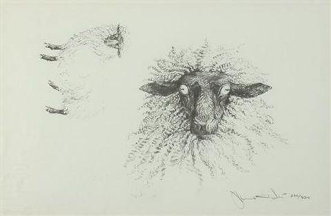 sheep head of sheep 2 works by jamie wyeth