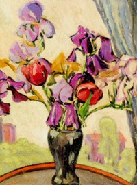 aiken iris by minnie harms neebe