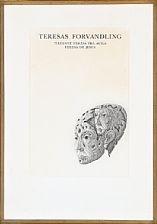 teresas forvandling by jørgen boberg