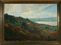 a danish moor landscape with view over lake by fritz johannes bentzen-billkvist