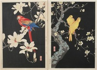 bird perched on flowering branch (2 works) by nishimura hodo