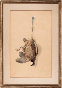 nature morte: bobwhite quail by george luis viavant