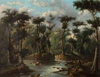 regenwald mit flusslauf by alex homa