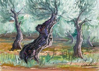 olivenhain by josep coll bardolet