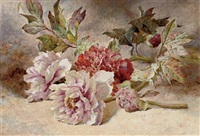still life of rununculas and peonies by helen cordelia angell