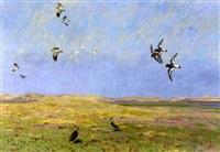 verschiedene küstenvögel in sommerlicher dünenlandschaft by friedrich lissmann
