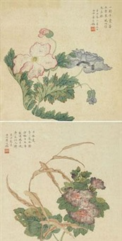花卉 (两件) (2 works) by jiang tingxi