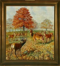 red deer in a forest by gerhard heilmann