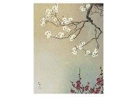 spring view (red and white plum) by kazuko gokura