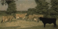 longueville brownie. v and four other jersey cows grazing by george gascoyne