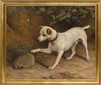 A dog poking a hedgehog, 1881
