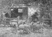 austrieb der schafe by leonore (leo) hiller-baumann