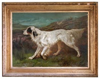 portrait of dash, ft ch. dash ii (kcsb 4039), an english setter, with another setter behind him, flushing grouse on moorland, with sportsmen behind by john charles dollman