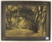 arch way of oaks by r.h. lesesne