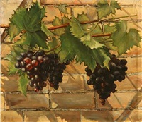 a branch with blue grapes by cecilie jacobaeus