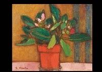 flowers by seiichi kasai