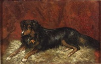 carlo/a portrait of a seated dog by scott leighton