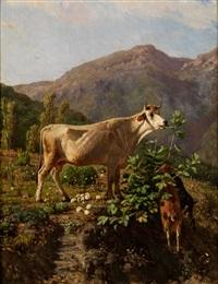 kuh und zwei geissen im hochgebirge by simone campanile