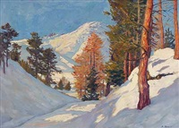 sonniger wintertag in den alpen by carl friedrich felber
